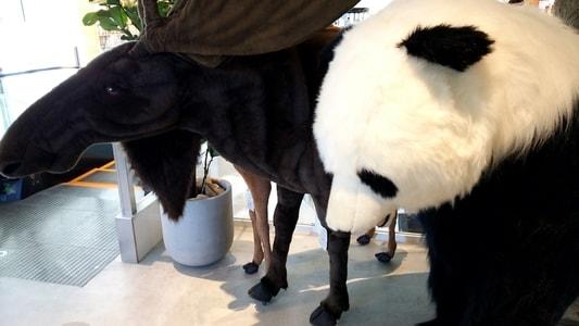 ららぽーと名古屋 蔦屋書店のヘラジカとパンダ