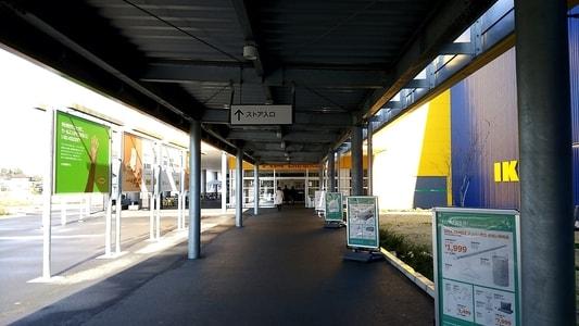 イケア長久手店 ストアの入り口へ続く道