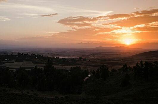 エチオピアの農園