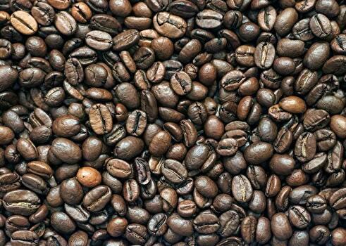 欠点豆の混じった焙煎済のコーヒー豆