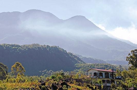 グァマテラのコーヒー農園